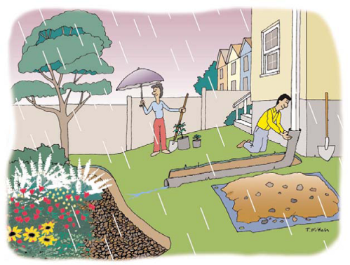 Harvest clean rain water for your garden!